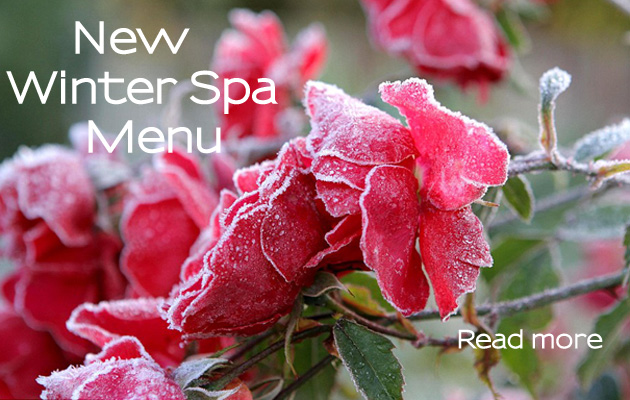 winter spa menu 400pixels (slide)